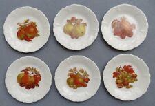 Set of SIX Tirschenreuth Bavaria Hutschenreuther Harvest Fruit Plates Germany