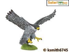 Safari PEREGRINE FALCON plastic toy farm pet hawk animal wild zoo BIRD * NEW *💥
