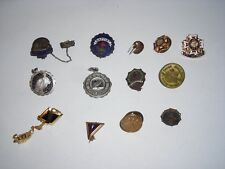 Collection of 13 Misc Pins College High School Legion Walrus Etc. Check it out