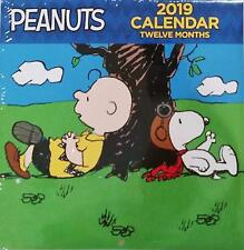 Peanuts 2019 Monthly Calendar - Twelve Months/Year (Snoopy, Charlie Brown, Lucy)