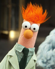 Beaker Muppet Fantastic Colour 10x8 Photo