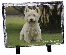 Westie 'Yours Forever'  Photo Slate Christmas Gift Ornament, AD-W10ySL