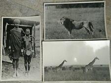 Photo Antique Nairobi Kenya 1955 Women Masai