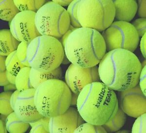 4 6 8 or 10 Used Tennis Balls - Great For Dogs - All Branded EXCELLENT CONDITION