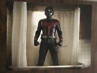 Ant Man Paul Rudd Autographed Signed 11x14 Photo COA
