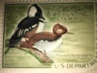 Migratory Bird Hunting Waterfowl Duck Stamp 1968 - 1969 Hooded Merganser