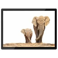 Quickmat Plastic Placemat A3 - Mother & Baby Elephant Cute  #2321