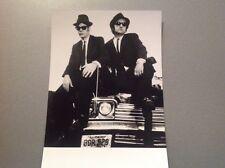 LES BLUES BROTHERS  - PHOTO DE PRESSE  14x20cm