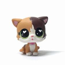 Hasbro Littlest Pet Shop Felina Meow Cat #339 Brown White Kitten Figure Toy Gift