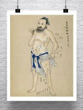 Acupuncture Chart Chinese Medicine Art Rolled Canvas Giclee Print 24x30 in.