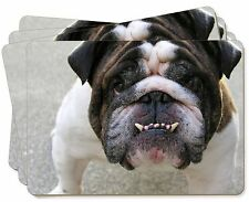 Bulldog Picture Placemats in Gift Box, AD-BU27P