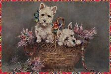 West White Highland Terrier Puppy Dogs by Mabel Gear New LARGE Blank Note Cards