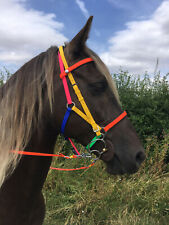 Perfeq Multi-Coloured 2 Part Synthetic Bridle