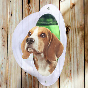 Dog Fence Window Acrylic Dog Dome for Backyard Fence Satisfying Curious Pets