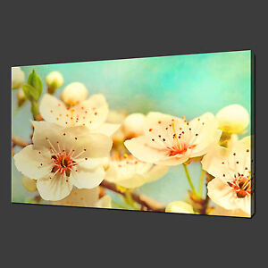 BEAUTIFUL CHERRY BLOSSOM FLOWERS WALL ART CANVAS PRINT PICTURE READY TO HANG