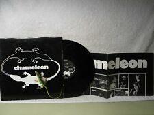Chameleon LP Self Titled Clean 1981 MN Garage Rock Orig! -W- Cool Poster! Yanni