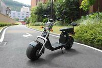 Bicicleta Eléctrica Scooter Citycoco El-Roller 1500W 40AH Eec / Coc