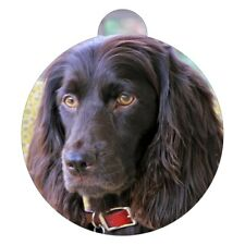 BoykinSpaniel Breed Picture Pet ID tag