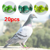 20Pc Pigeon GB Ring Band Leg Foot Ring Aluminium Homer Ring Plastic NEW Arrived