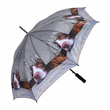 "Beautiful stick Umbrella - ""I SPY"" from Country Matters - SPANIEL"