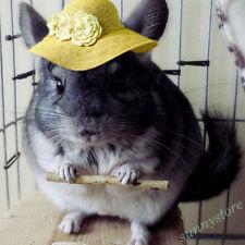 50g Fresh Apple Wood Chew For Small Pets Hamster Rabbit Splits Toy Hot Bid Top
