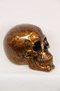 Skull Head With Snake Skin Design Statue Ornament 18 cm