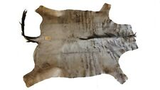 Large Genuine Blue Wildebeest Cow Hide Skin Rug Africa African Throw