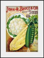 1898 JOHN BRUCE Vegetable Seed Catalog cover, NEW Fine Art Giclee Print