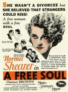 A Free Soul - 1931 - Norma Shearer Leslie Howard Brown Pre-Code Crime Drama DVD