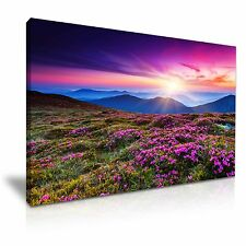 Hermosas Flores De Montaña Paisaje Sol LONA pared arte Foto impresión 76x50cm