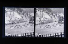 Payasages de Montagnes Suisse Allemagne Autriche 2 Photos stéréo négatifs