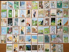TINTIN: LOT DE 64 CHROMOS MILOU BUBBLE GUM AU MIEL - COMME NEUF