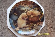 "Bradford Exchange Collector Puppy Dog Plate - ""Brotherly Love"""