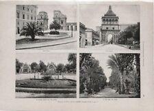 Stampa antica PALERMO Porta Felice e Nuova Villa Giulia Sicilia 1891 Old print