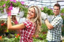 Greenhouse Garden & Plant Nursery BUSINESS PLAN + MARKETING PLAN = 2 PLANS!