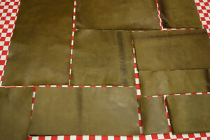 THIN HORWEEN FROG GREEN 2 oz. HORSE LEATHER CUTS. SELECT YOUR SIZE.