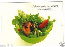 J'ai tout plein de salades à te raconter... (H6018)