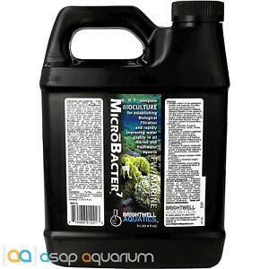 Brightwell Aquatics MicroBacter7 2 Liter Bioculture Freshwater & Marine Aquarium