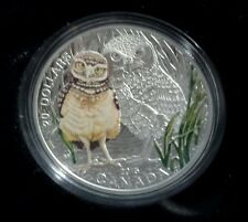 Baby Burrowing Owl - 2015 $20 Pure Silver Coin & Stamp Set