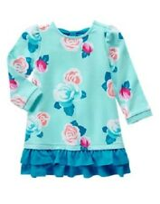 Gymboree Ballet Class Aqua Blue Rose Floral Ruffle Dress Toddler Girl Size 3T