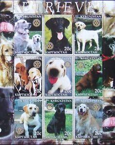 Kyrgyzstan( local post)  - DOGS-RETRIEVER-,1M/Sh, MNH**, KPLR 2C/L
