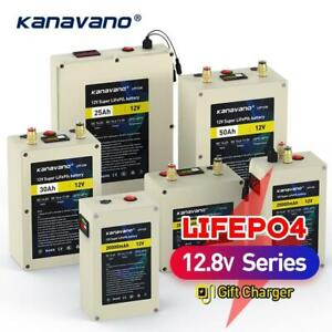 12V Deep Cycle LiFePO4 Rechargeable Battery Pack 12.8V 20Ah 30Ah 40Ah 50Ah Life