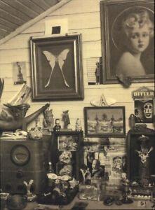 1999 Bruce Weber Antique Collection Luna Moth Vintage Radio Art Photo Gravure