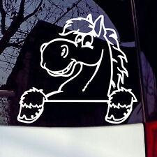 Cute Pony Laptop Or Car Sticker Vinyl Art Decal JDM Window Bumper Decor
