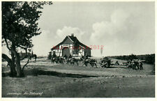 Foto, Wk2, Ak, Sennelager Am Diebeshof, 6./A.R.6,  (N)21081