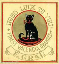 Valencia Spain Black Cat Good Luckto You Orange Citrus Fruit Crate Label Print