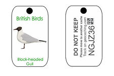 British Birds Trackable Tag for Geocaching Series of Tags (like a Travel Bug) Blue TIT