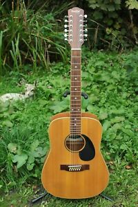 Indie 12 String Acoustic Guitar ID-20/12 2010 Hard Case Included Superb