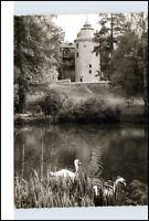 LAUBACH Oberhessen Hessen 1956 Partie Schloss mit Teich Schwan alte s/w AK