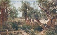 Jerusalem garden of gethsemane photochrom church mission to jews